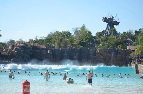 my holiday in florida Browse online for cheap offers on package holidays to florida for the whole family to enjoy travel city direct - we know a great deal.
